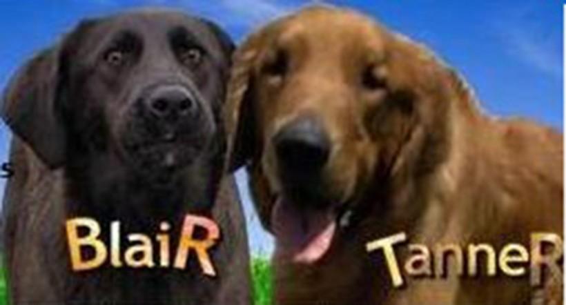 "Tanner & Blair Find Their ""Furever"" Home"