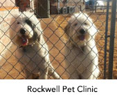 Rockwell Pet Clinic
